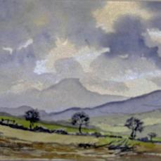 Nof.painting george