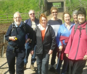Members of the Shorter Walks Group on the Teddesley, Dunston and Acton Trussell walk 11.05.15